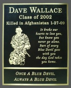 24 inch x 30 inch Cast Bronze Plaque, Flat Relief Graphic, Single Line Border, Hidden Stud Mount